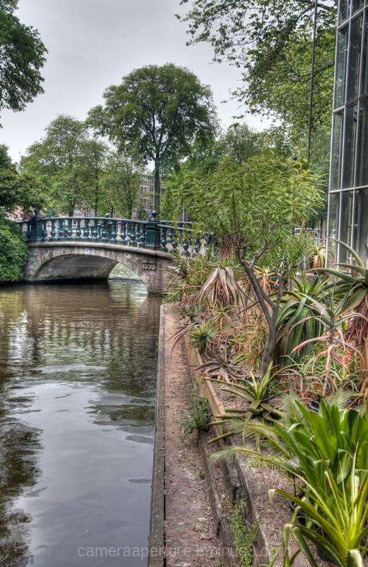 Bridge from the botanic gardens in Amsterdam