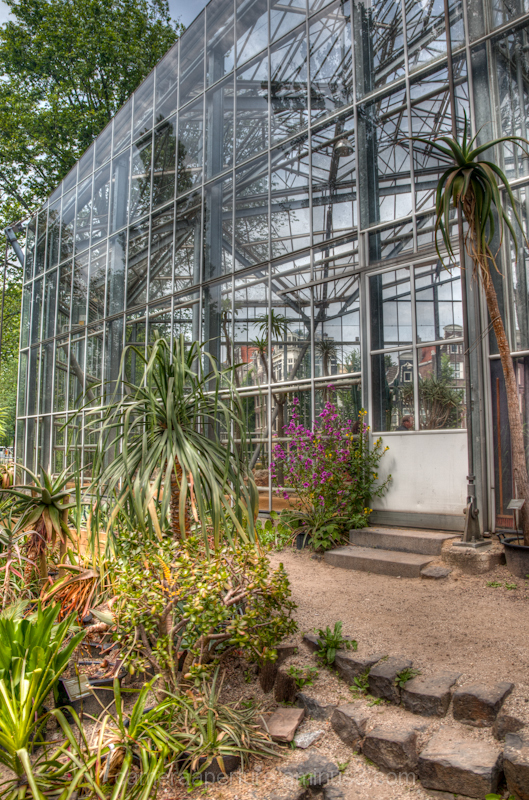 The botanic gardens in the city of Amsterdam