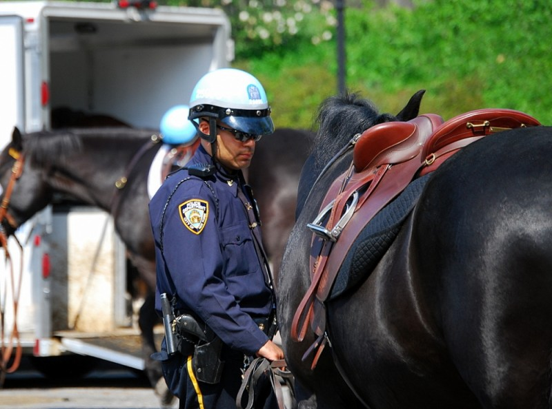 NYPD Mounted Div.