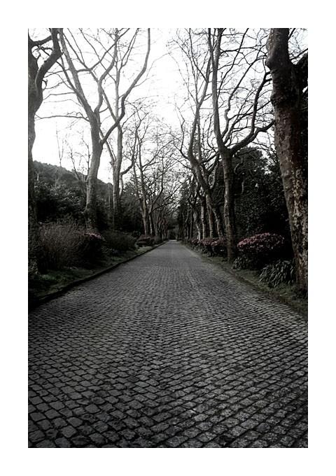 Uma estrada sem fim