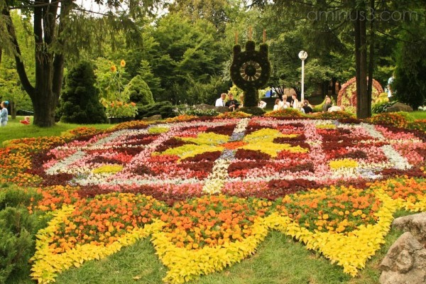 Floral Arrangement Kiev Pechersk Landscape Park