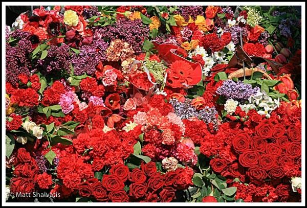 flower memorial victory day kiev