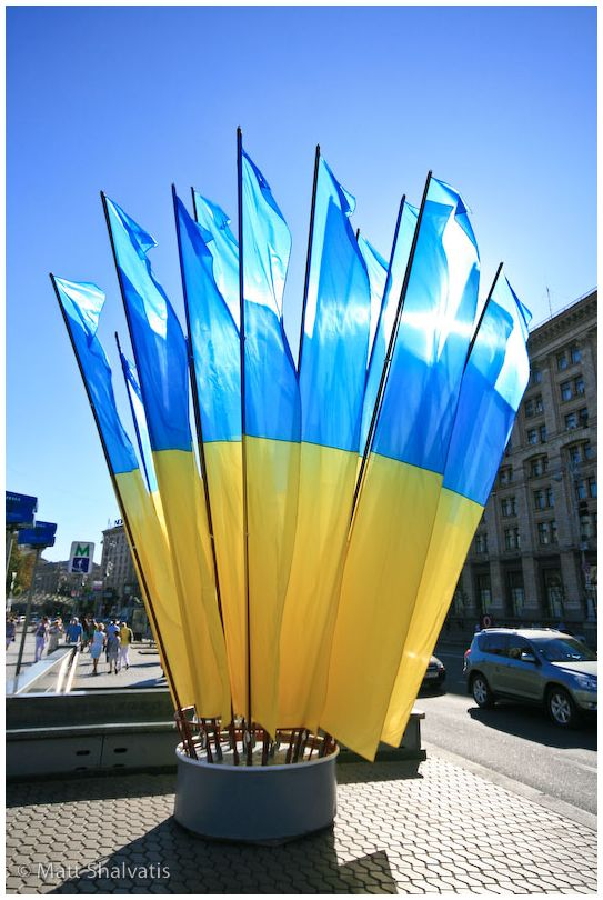 Ukraine Independence Day Kiev Flags