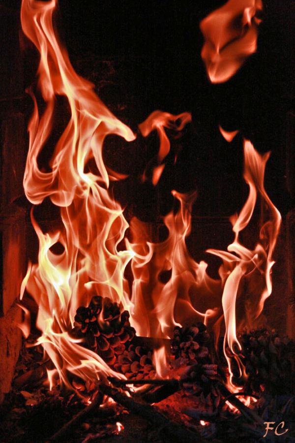 Tout feu ... tout flamme