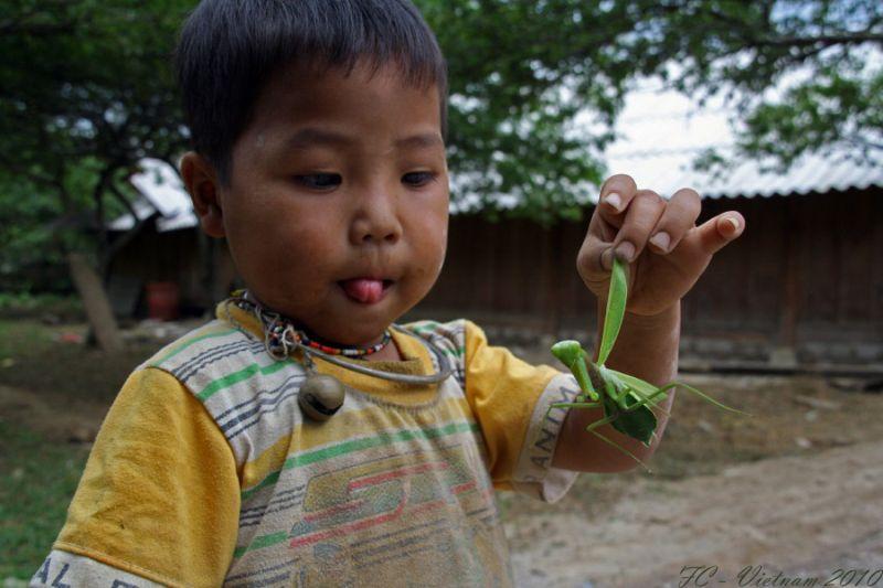 Viet Nam 2010 #4