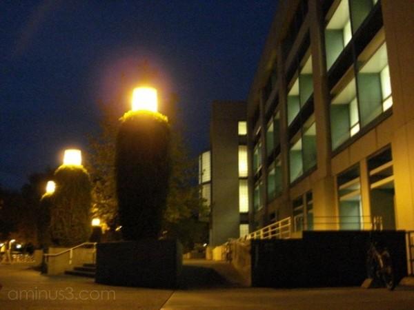 building night davis