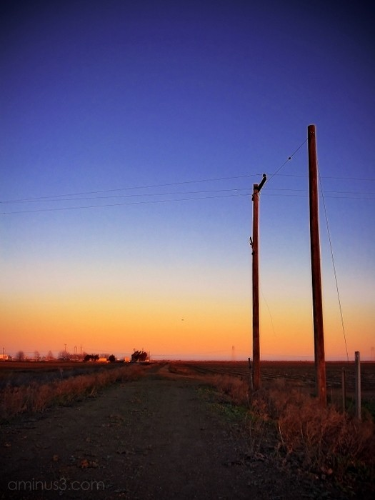 sunset sky farm land agriculture power line pole