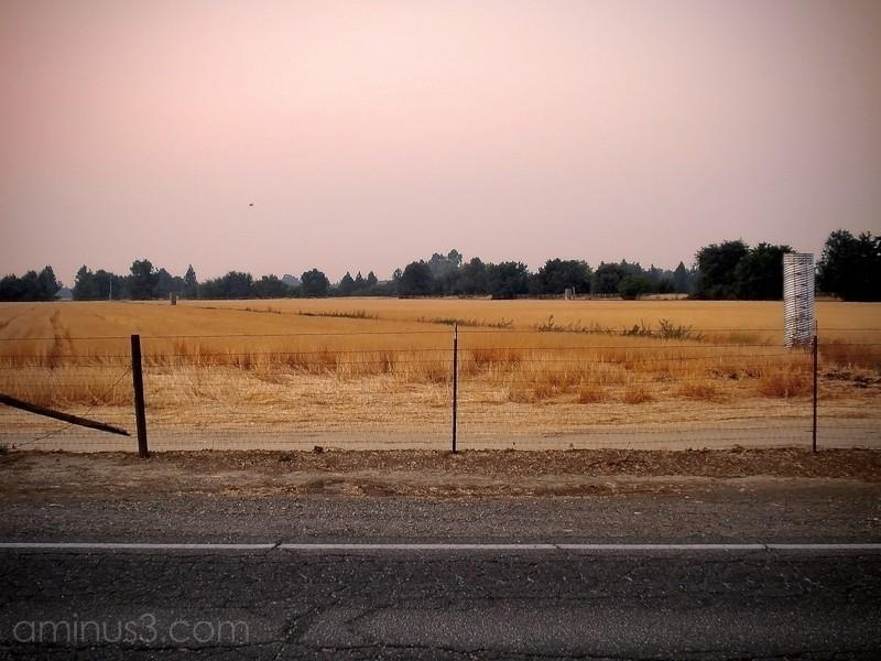 landscape agriculture farm land