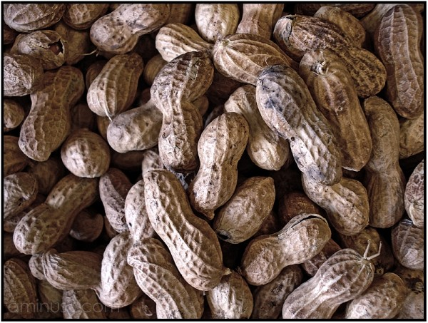 peanuts macro