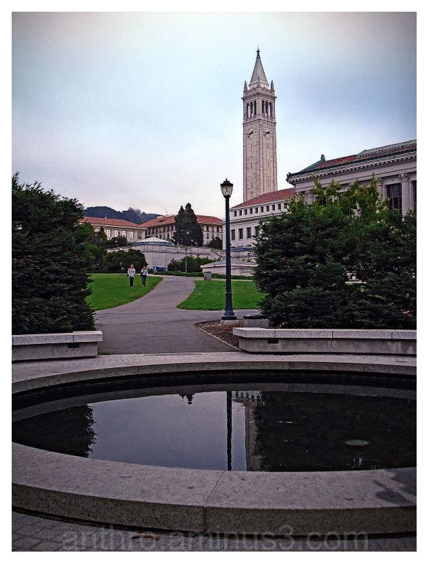 doe campanile pool people water memorial glade