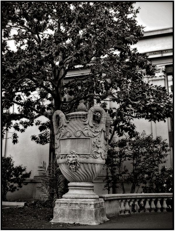 lion cup statue berkeley hearst