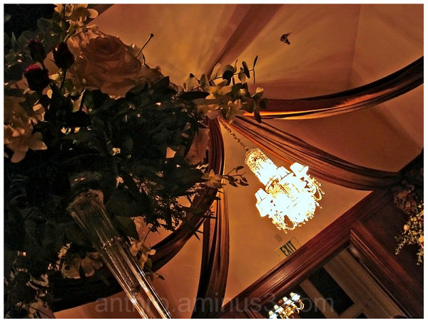flowers centerpiece ceiling chandelier wedding