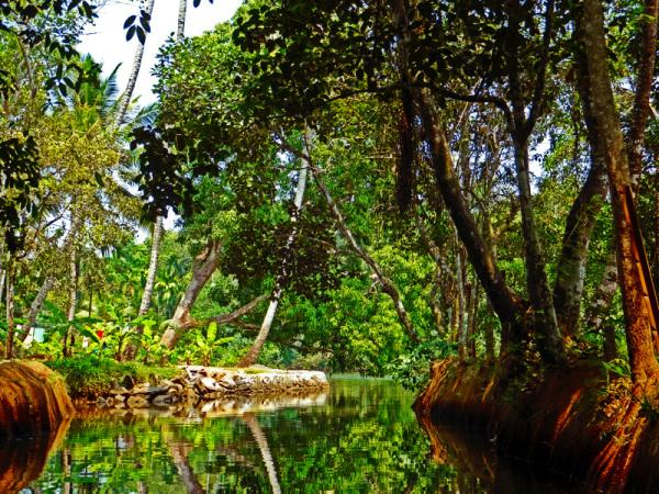 untitled keralan backwaters 1