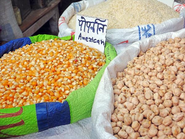 american corn for sale in delhi