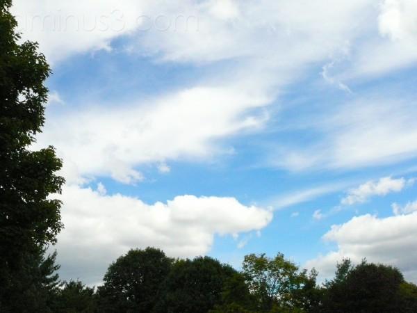 Blue Sky's