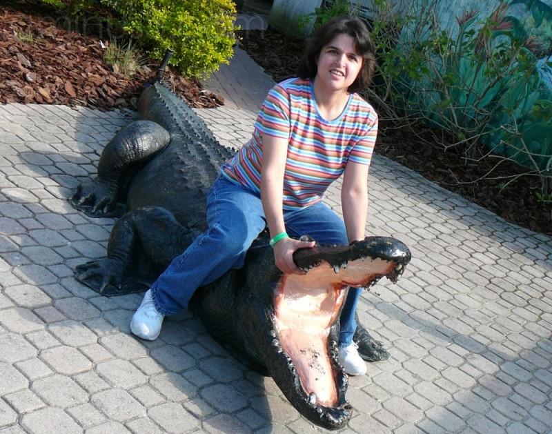 Alligator Wrestling ...