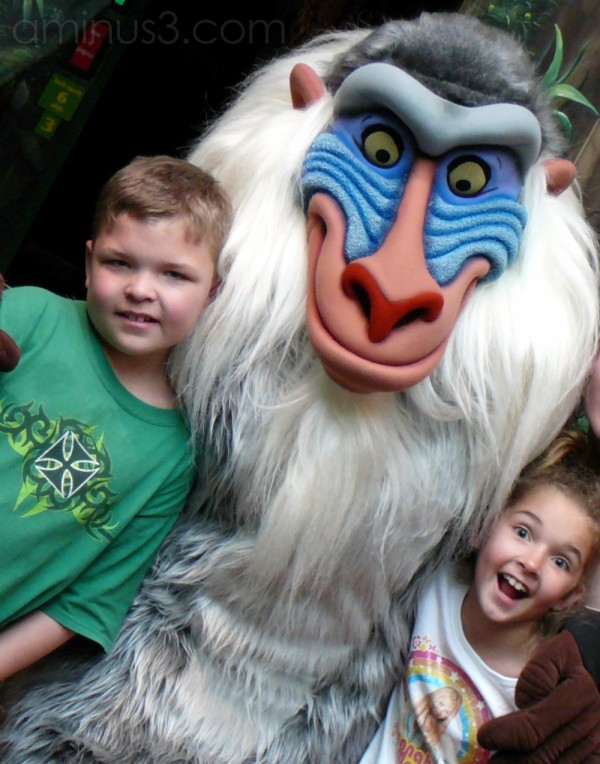 Hangin out with Rafiki ...