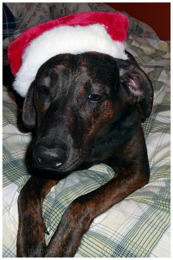Is Christmas over yet ?