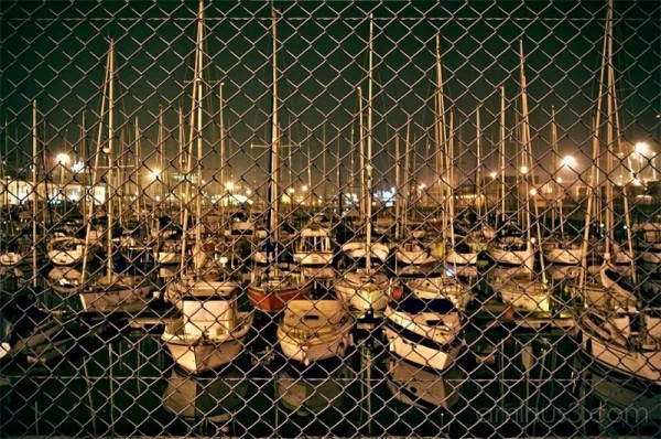 boats in harbor at night