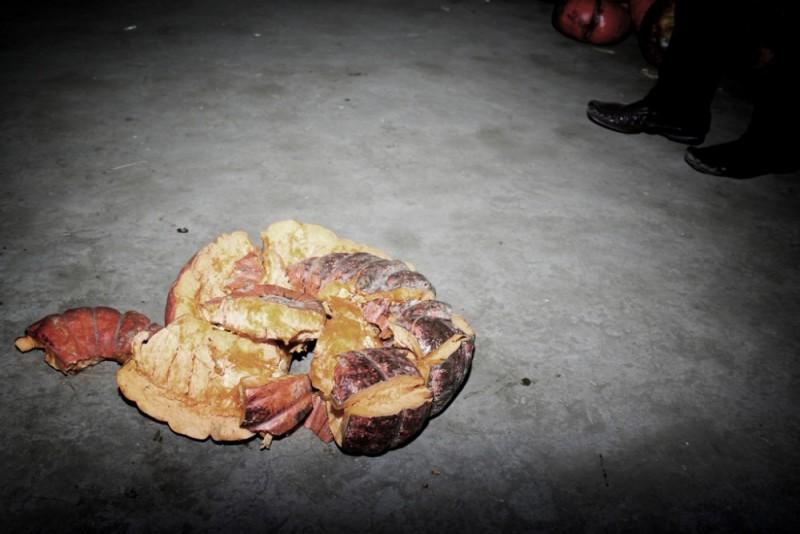 Crushed pumpkin