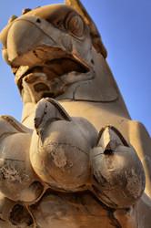 "Persepolis Griffin!  "" HOMA Bird """