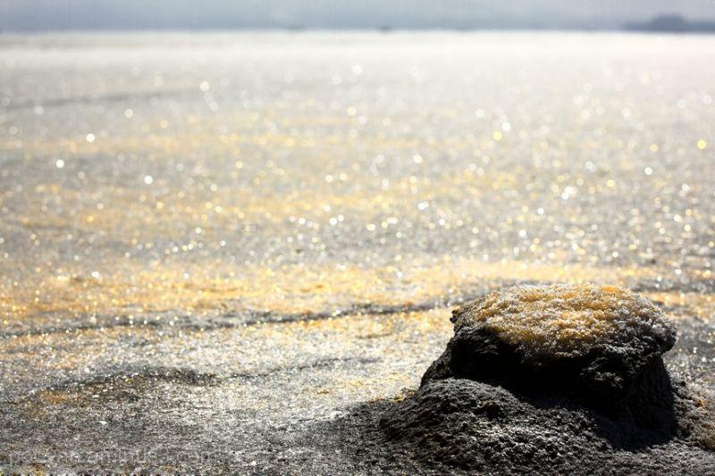 Salty Desert!