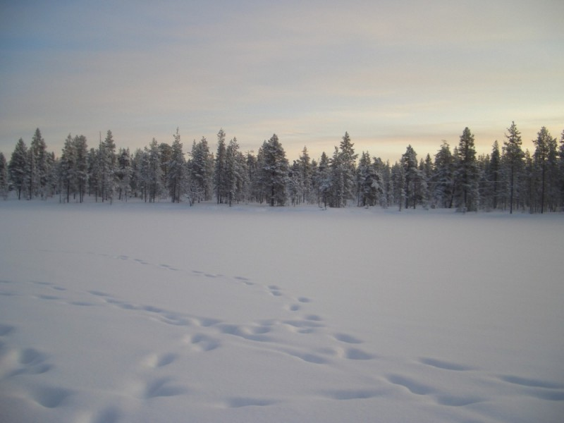 Finlàndia (I)