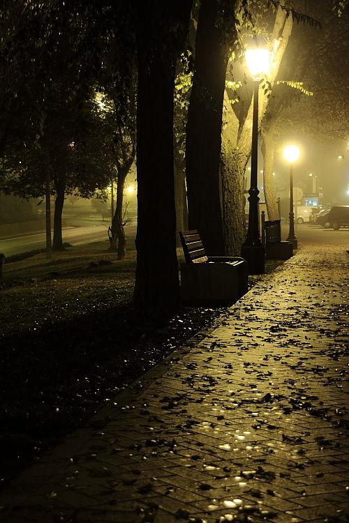 Fog in Valladolid