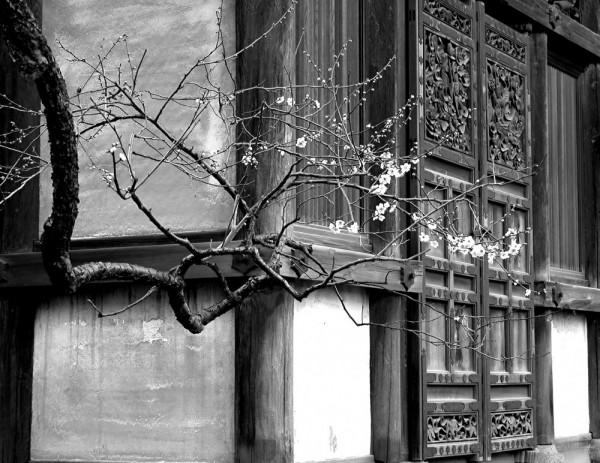 Old structure in the Sankei-en,Yokohama,Japan