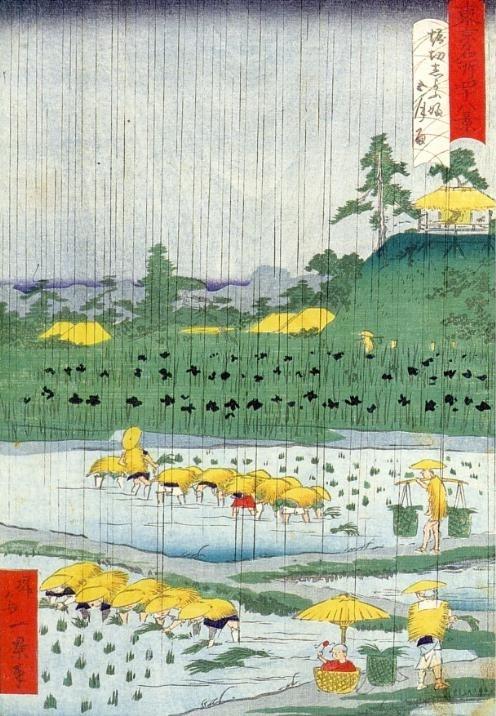 Woodblock print on Horikiri iris fields