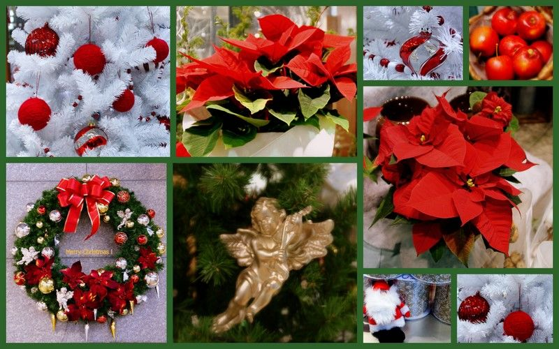 Collage of Christmas decorations