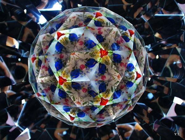 Kaleidoscope - fish under glass