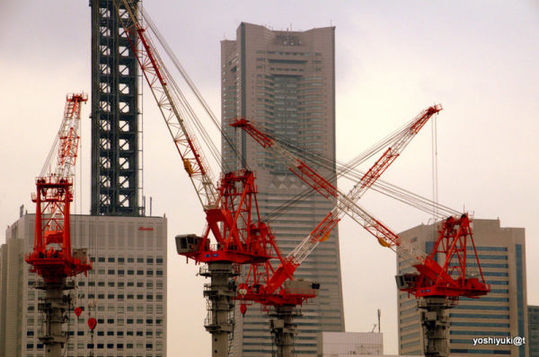 Cranes over Yokohama