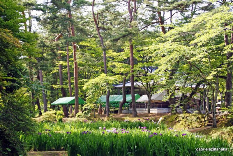 Kaizando Hall behind the iris garden, Hiraizumi