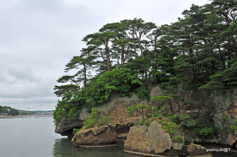 View of a scenic island promontory,Matsushima Bay