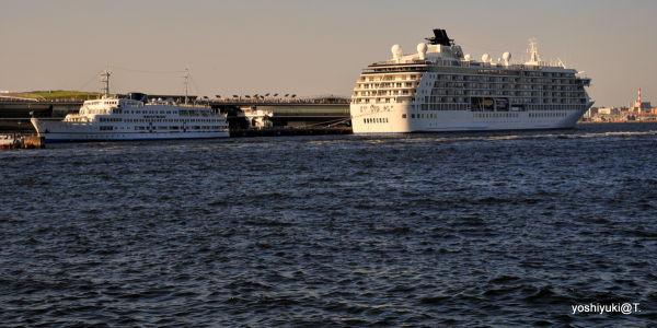 Pacific Venus at anchor in Yokohama Bay