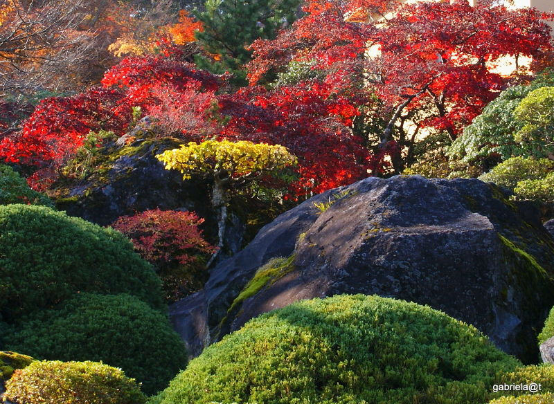 Landscaped Japanese garden,detail