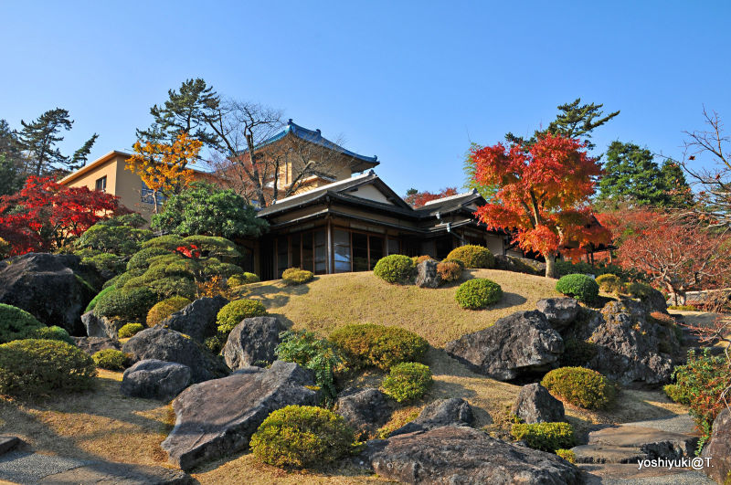 Garden core at Hakone Museum of Art,Gora