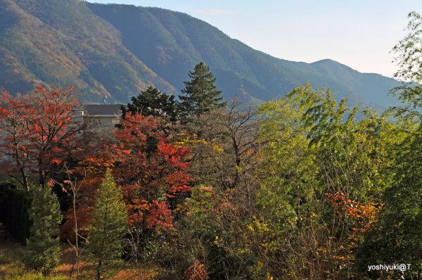 A view to the Hakone mountains,Gora,Hakone