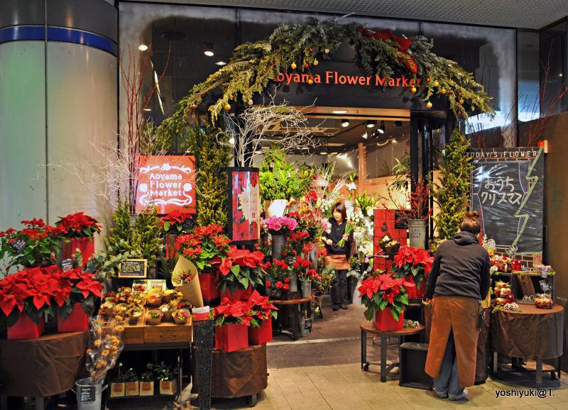 Flower shop before Christmas, Aobadai,Kanagawa