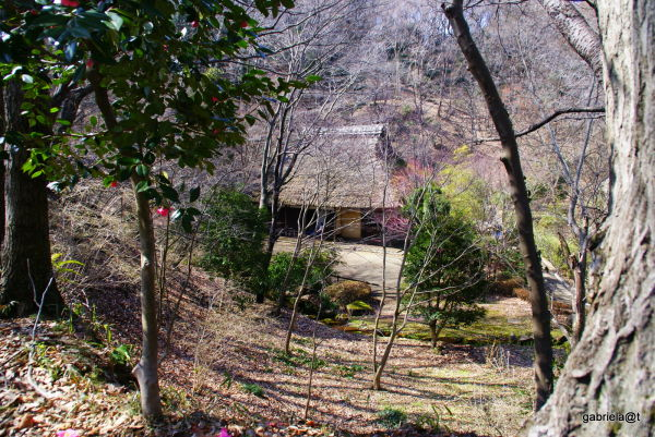 Gassho-zukuri house at Yakushiike,Machida