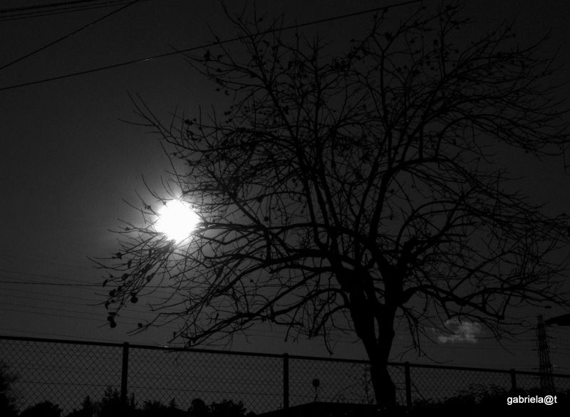 Looking straight into the sun, Kanagawa
