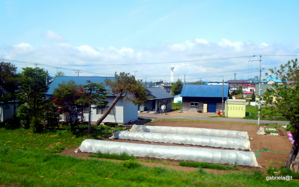 Hokkaido , small city suburb