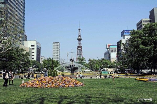 View of Odori Park Street in Sapporo,Hokkaido
