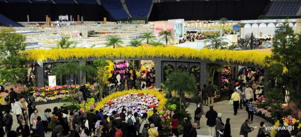 Entrance view of the Orchid Show at Tokyo Dome