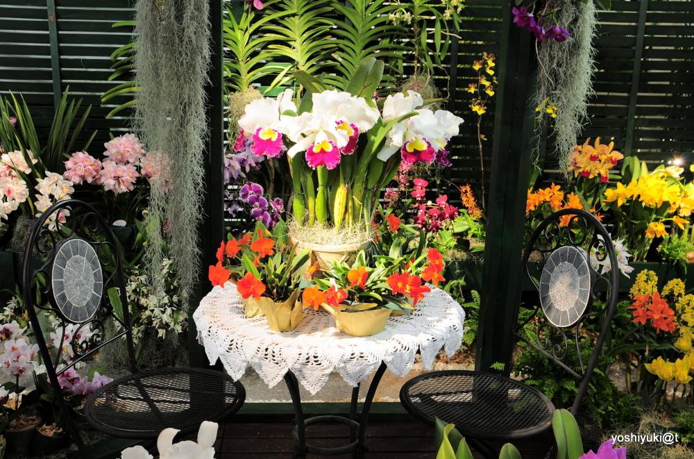 Flowery porch - an installation