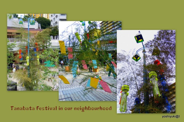 The Tanabata Festival in the neighbourhood