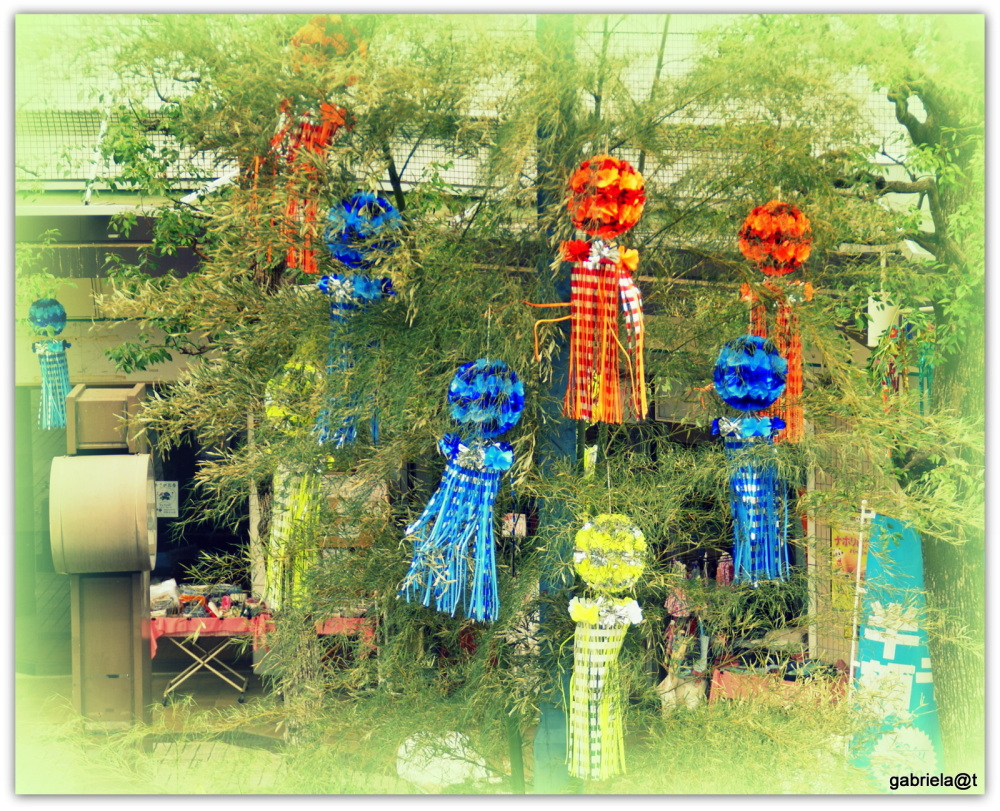 Tanabata in the neighbourhood