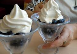 Canadian blueberries & Hokkaido soft cream