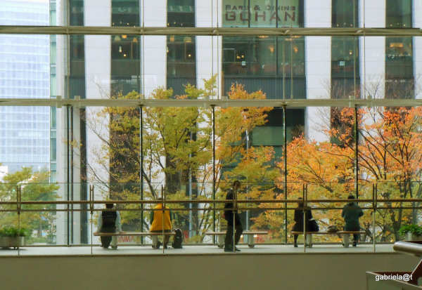Through the window at Queen's Plazza,Yokohama